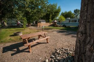 Cottonwood Cove Resort - Heron Lane 7A