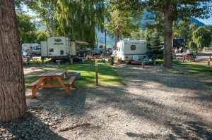 Cottonwood Cove Resort - Heron Lane 8A