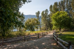 Cottonwood Cove Resort - Sockeye Lane 13B