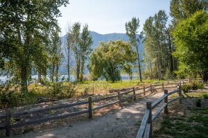 Cottonwood Cove Resort - Sockeye Lane 15C