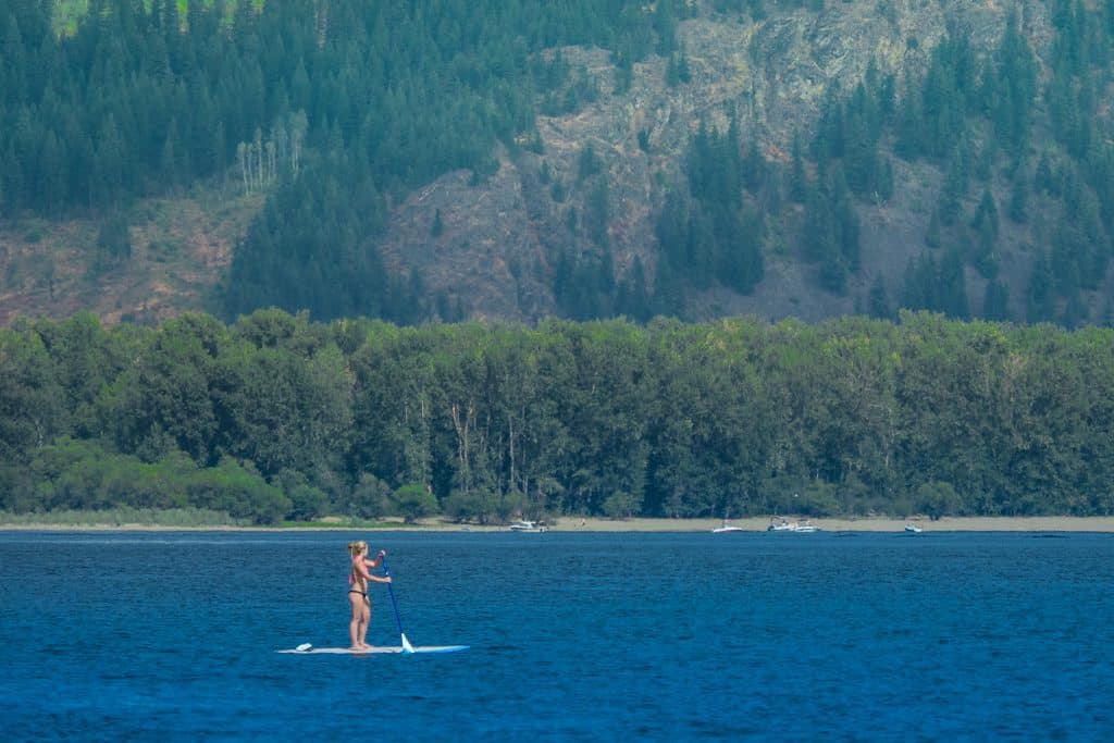 Cottonwood Cove Resort - Stock Paddleboarder